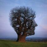 Mindfulness: Sé productivo vaciando tu mente