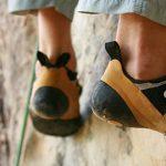 8 puntos de apoyo para adquirir un hábito