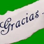 Practicando la gratitud: párate, mira y actúa